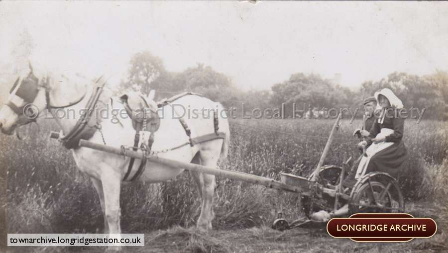 Miscellaneous Photograph, Horse And Plough